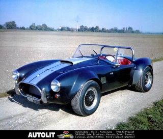 shelby cobra kit in Replica/Kit Makes