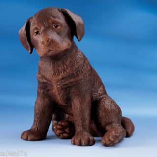 Lenox Chocolate Brown Lab Labrador Retriever Puppy LRGE