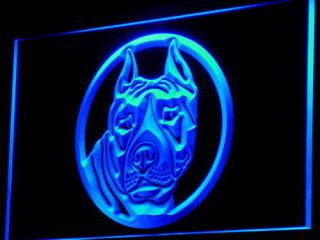 i692 b Staffordshire Bull Terrier Staffie Dog Neon Sign