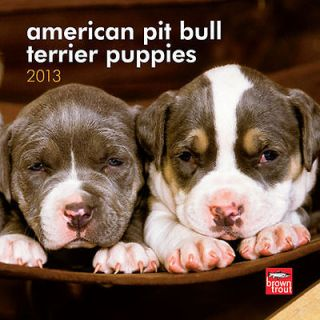 American Pit Bull Terrier Puppies 2013 Mini Wall Calen