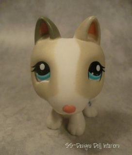 Littlest Pet Shop LPS 1665 White & Tan English Bull Terrier Dog Puppy