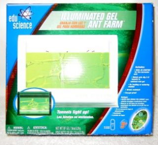 Illuminated Gel Ant Farm Edu Science Age 5+ Includes LED Light Coupon