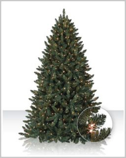 7FT BALSAM SPRUCE PRE LIT CLEAR OR MULTI COLORED CHRISTMAS TREE