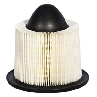 FA1632 Air Filter Element, Conical, Paper, White, Ford, Passenger Car