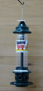 Brome Squirrel Buster Plus Bird Feeder Squirrel Proof