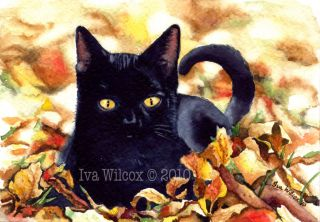 Ehag Original Halloween Black Cat 5x7 Watercolor Pfatt