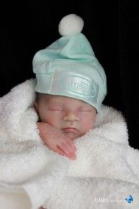 Reborn Vinyl Doll Kit Supply Baby Caleb by Heather Boneham Lifelike