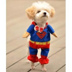 Superman Pet Dog Cat T Shirt Apparel Costumes Clothes