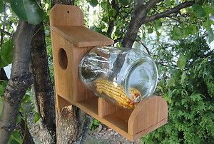 Red Cedar Squirrel Feeder With 1 Gallon Glass Jar