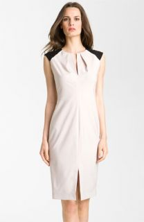 Rachel Roy Colorblock Sheath Dress