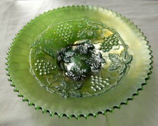 ANTIQUE NORTHWOOD GREEN CARNIVAL GLASS GRAPE AND CABLE VARIANT 9 PLATE