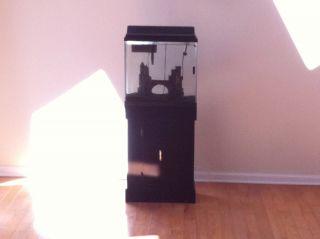 Complete 15 Gallon Black Contemporary Fish Tank Setup
