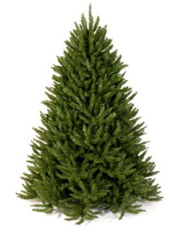 Frasier Fir Artificial Christmas Tree Made in USA