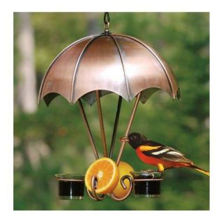 Copper Bird Feeder Brushed Copper Glass Umbrella