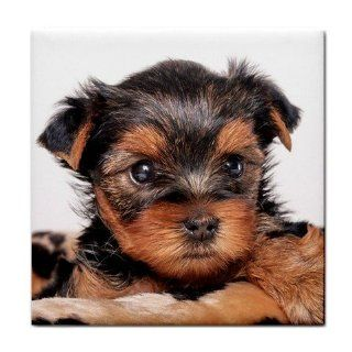 Yorkshire Terrier Puppy Dog 8 Tile Coasters (Set/4) HH0655
