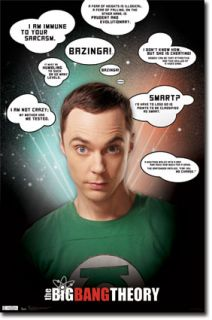 The Big Bang Theory Sheldon Cooper Quotes Jim Parsons Poster