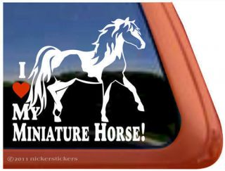 Love My Miniature Horse Pinto Miniature Horse Trailer Window Decal