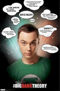 BIG BANG THEORY POSTER ~ SHELDON SARCASM QUOTES 22x34 TV Jim Parsons