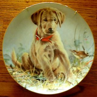Franklin Mint Eye To Eye Golden Retriever Lab Puppy Dog Plate