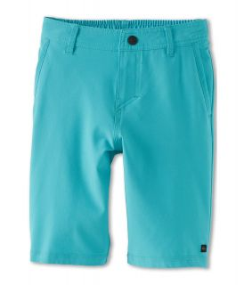 Quiksilver Kids F.A.A. Short Boys Swimwear (Blue)