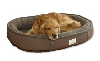 Wraparound Dog Bed With Memory Foam / Large   Dogs 50 80 Lbs., Chocolate, Large