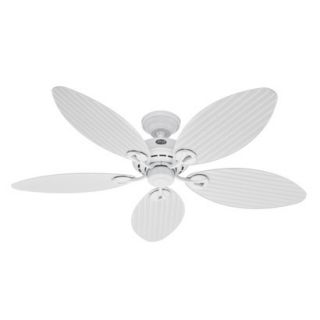 Hunter Fan Bayview Outdoor Ceiling Fan