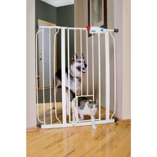 Extra Tall Expandable Gate with Small Pet Door