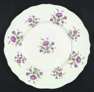 Royal Cauldon Thistle Dinner Plate, Fine China Dinnerware   Pink/Blue Flowers,Gr